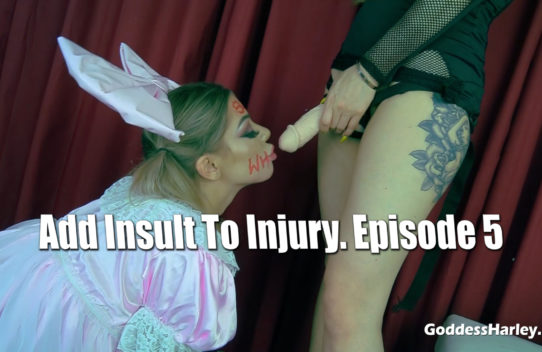 Add Insult To Injury. Episode 5
